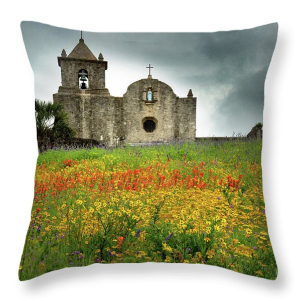 Goliad in Spring Throw Pillow by Jon Holiday