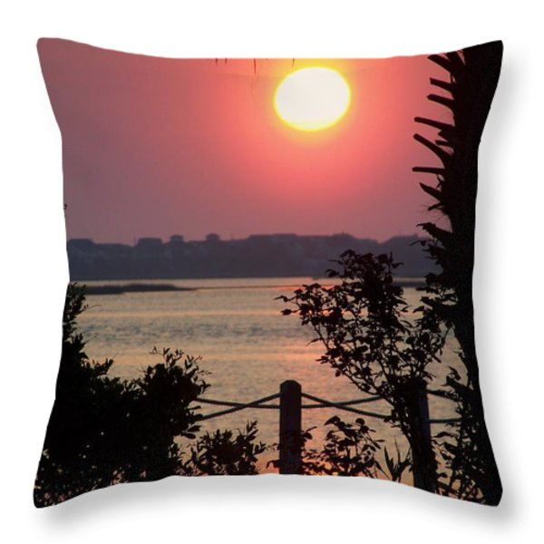 Good Morning Throw Pillow by KAREN WILES