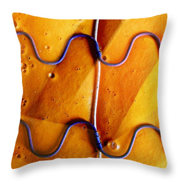 Government Cheese Throw Pillow by Skip Hunt
