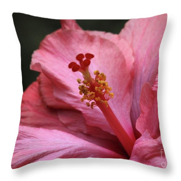 Grand Hibiscus Throw Pillow by Sabrina L Ryan