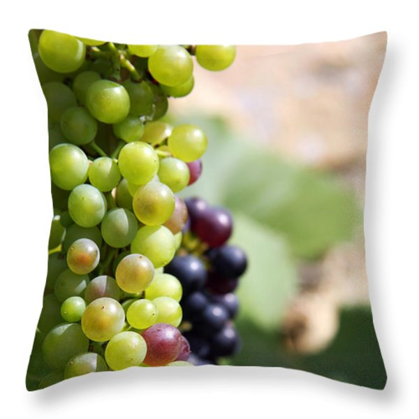 Grapes Throw Pillow by Jane Rix