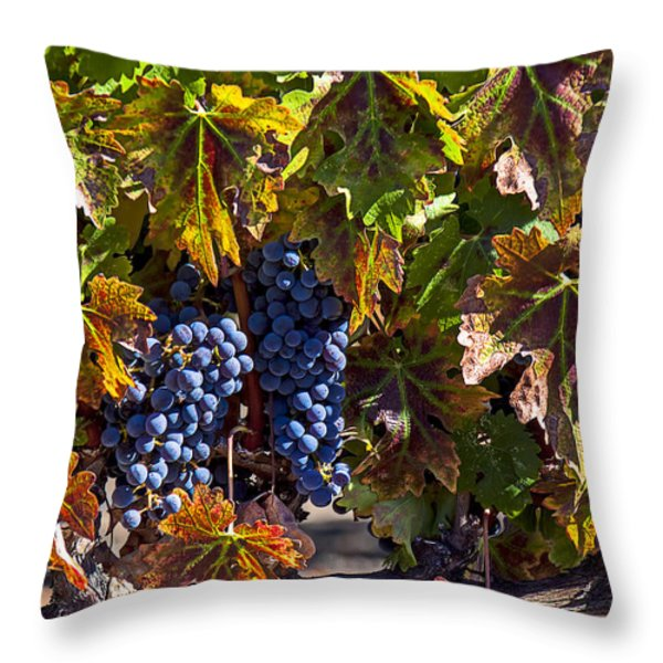 Grapes Of The Napa Valley Throw Pillow by Garry Gay