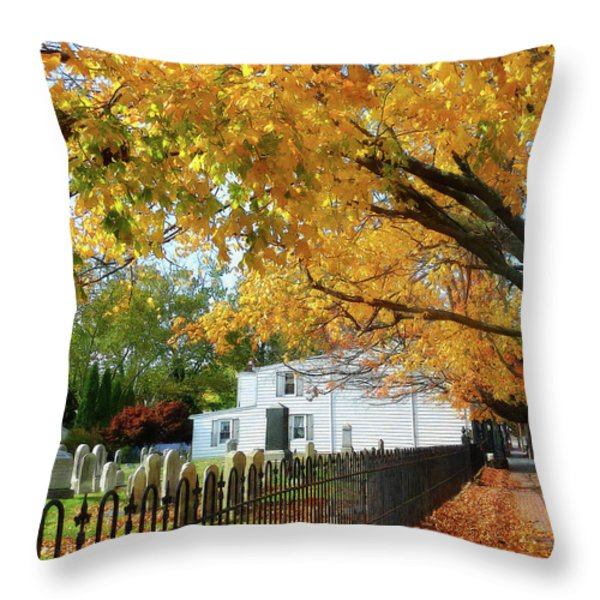 Graveyard In Autumn Throw Pillow by Susan Savad