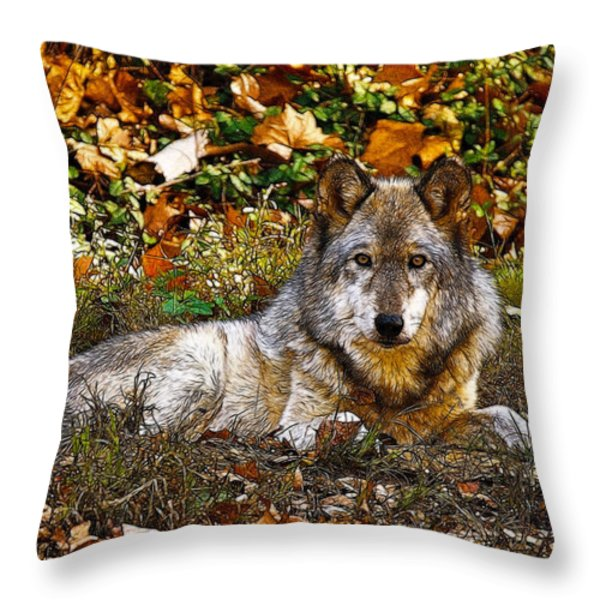 Gray Wolf in Autumn Throw Pillow by Sandy Keeton