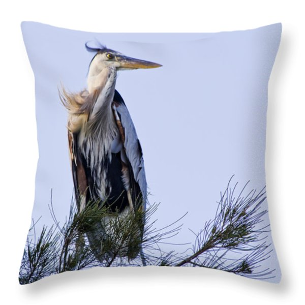 Great Blue Heron On A Windy Day Throw Pillow by Roger Wedegis