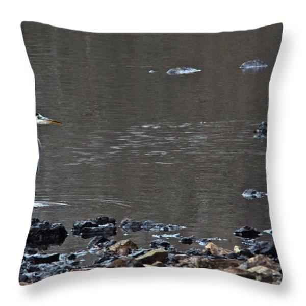 Great Blue Heron Wading 1 Throw Pillow by Douglas Barnett