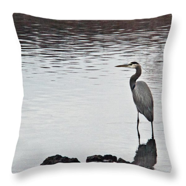 Great Blue Heron Wading 3 Throw Pillow by Douglas Barnett