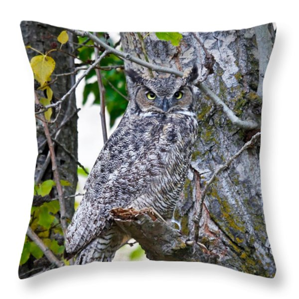Great Horned Owl Throw Pillow by Athena Mckinzie
