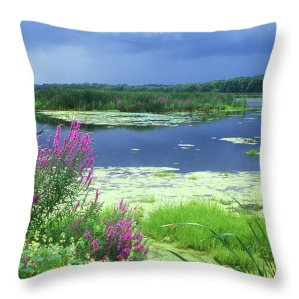 Great Meadows National Wildlife Refuge Throw Pillow by John Burk