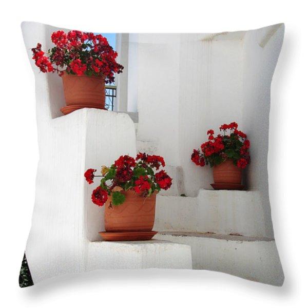 Greek Steps Throw Pillow by Jane Rix