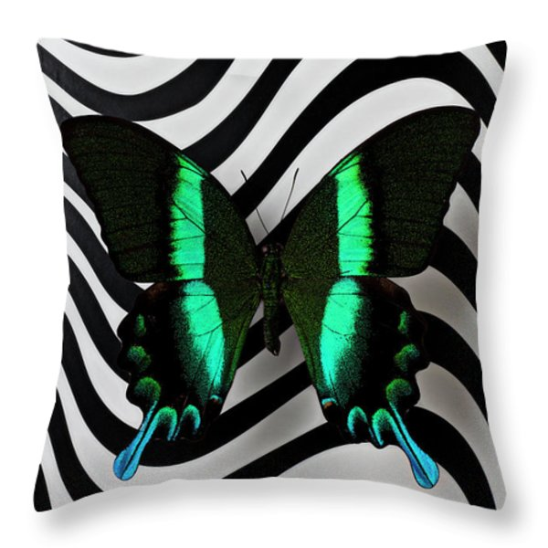 Green And Black Butterfly On Wavey Lines Throw Pillow by Garry Gay