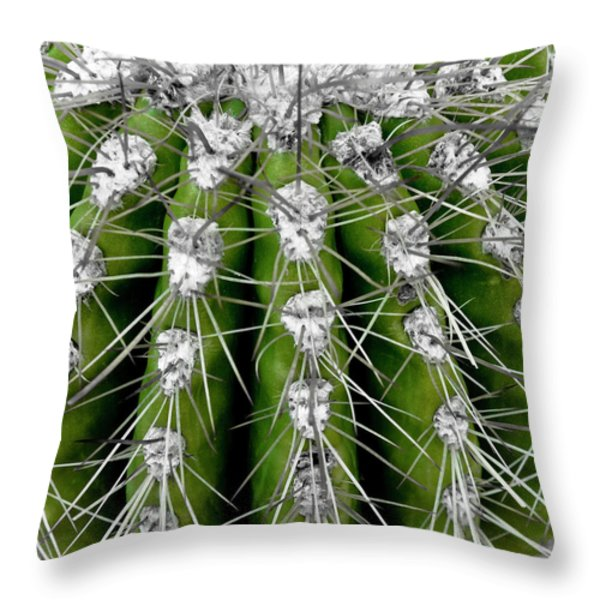Throw Pillow featuring the photograph Green Cactus by Frank Tschakert