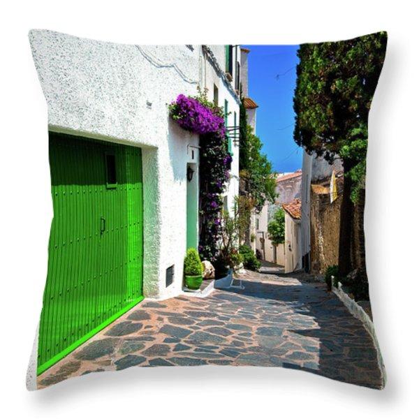 Green Door Passage  Throw Pillow by Harry Spitz