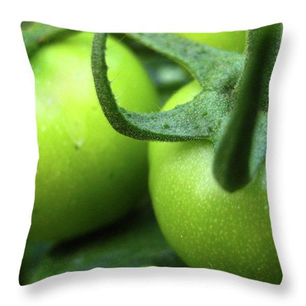 Green Tomatoes No.3 Throw Pillow by Kamil Swiatek