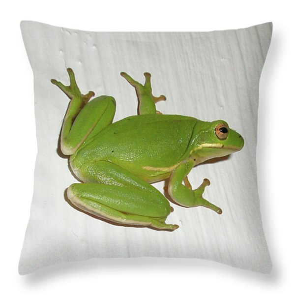 Green Tree Frog - Hyla Cinerea Throw Pillow by Mother Nature