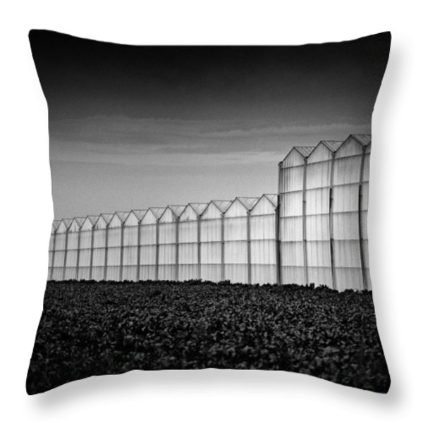 Greenhouse Throw Pillow by Dave Bowman