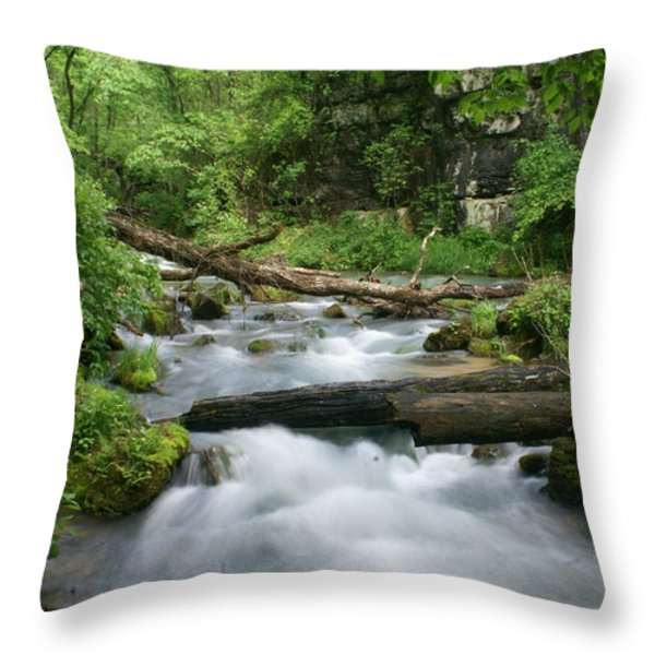 Greer Spring Branch 1 Throw Pillow by Marty Koch