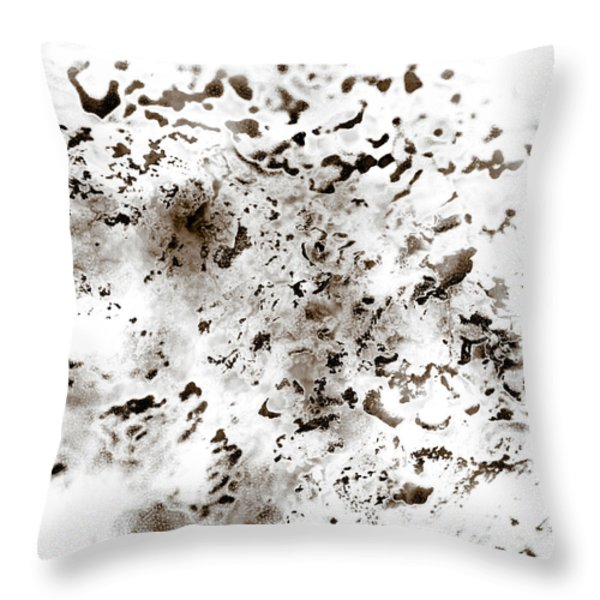 Throw Pillow featuring the painting Grey Moss Abstract by Frank Tschakert