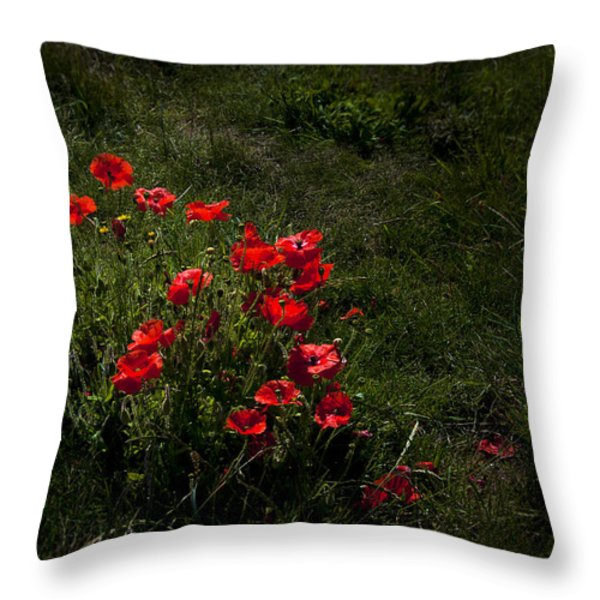 Group Of Poppies Throw Pillow by Svetlana Sewell