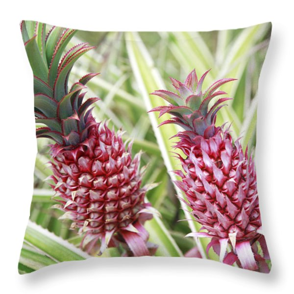 Growing Red Pineapples Throw Pillow by Brandon Tabiolo - Printscapes