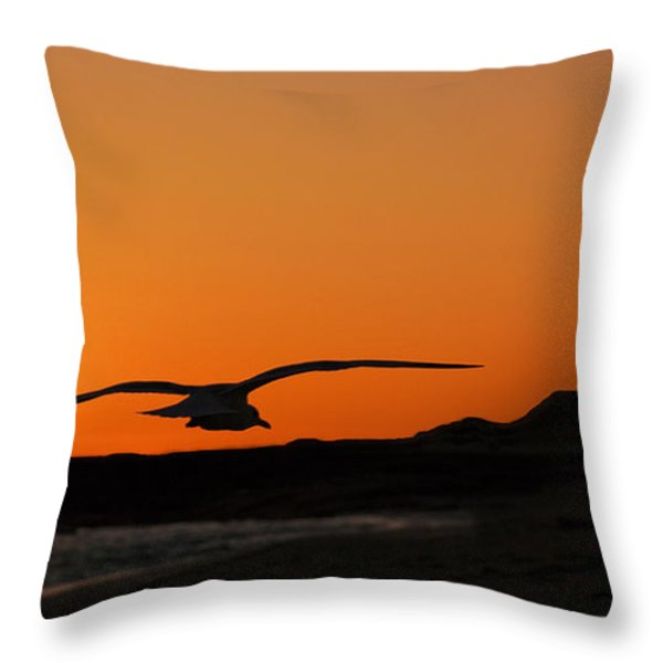 Gull At Sunset Throw Pillow by Dave Dilli