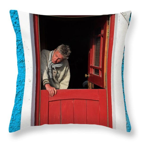 Half Door Throw Pillow by Aidan Moran