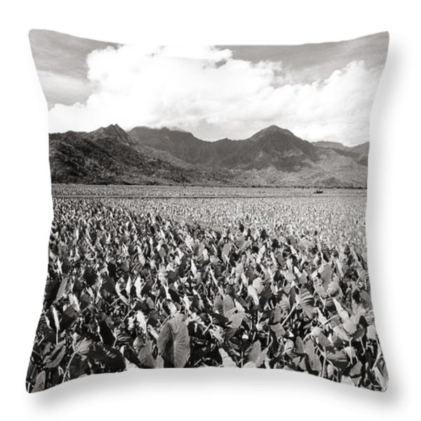 Hanalei Taro Fields Throw Pillow by Bob Abraham - Printscapes
