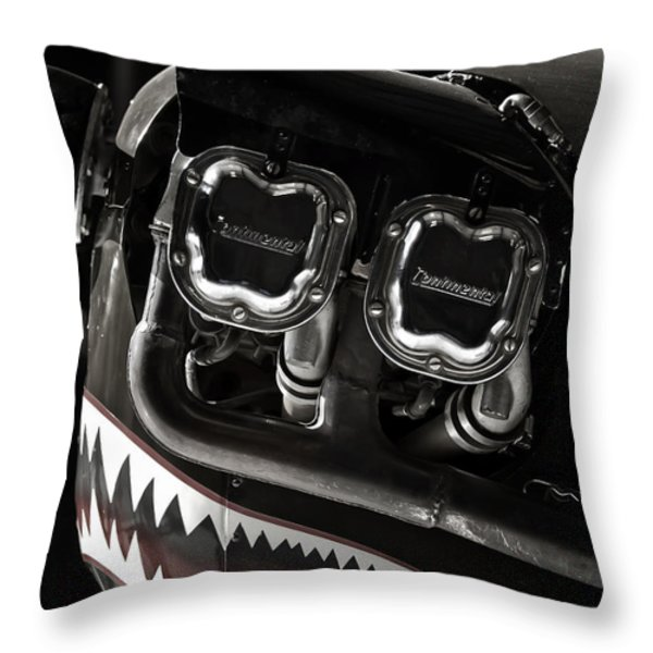 Happy Flying Throw Pillow by Joan Carroll
