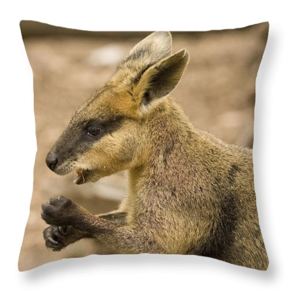 Having a Snack Throw Pillow by Mike  Dawson