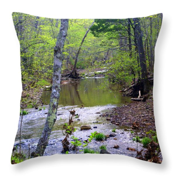 Haw Creek Throw Pillow by Marty Koch