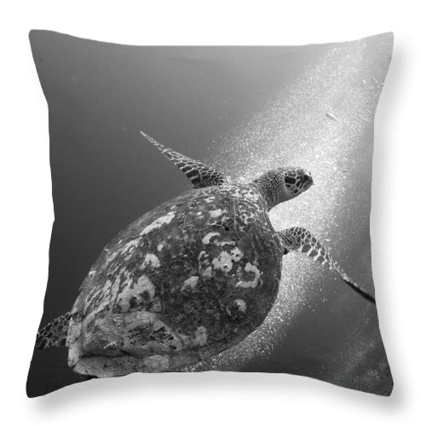 Hawksbill Turtle Ascending Throw Pillow by Steve Jones