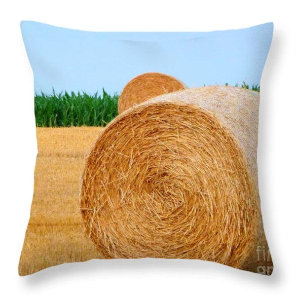 Hay Bale With Crane Throw Pillow by Michael Garyet
