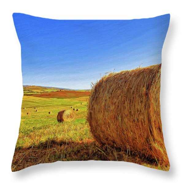 Hay Bales Throw Pillow by Dominic Piperata