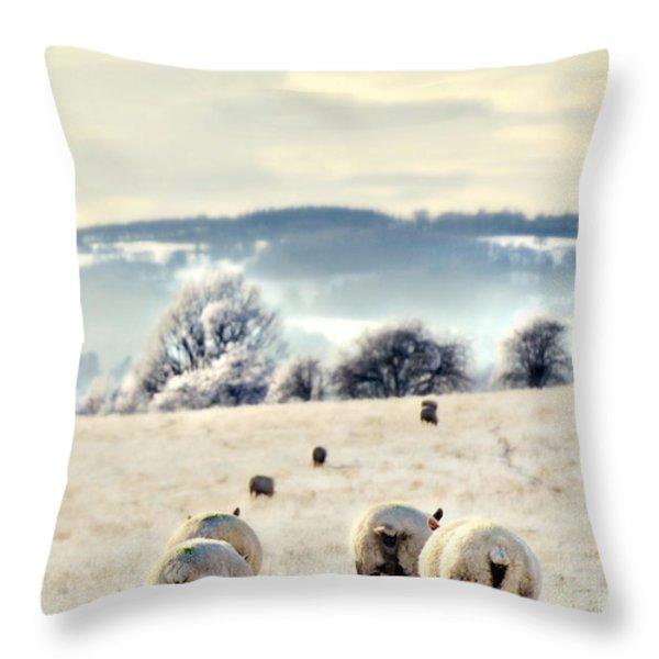 Heading Home Throw Pillow by Meirion Matthias