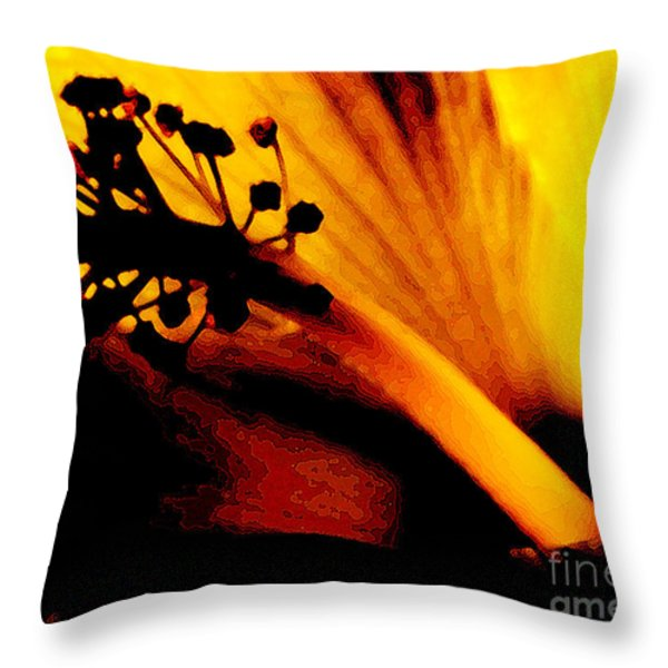 Heat Throw Pillow by Linda Knorr Shafer
