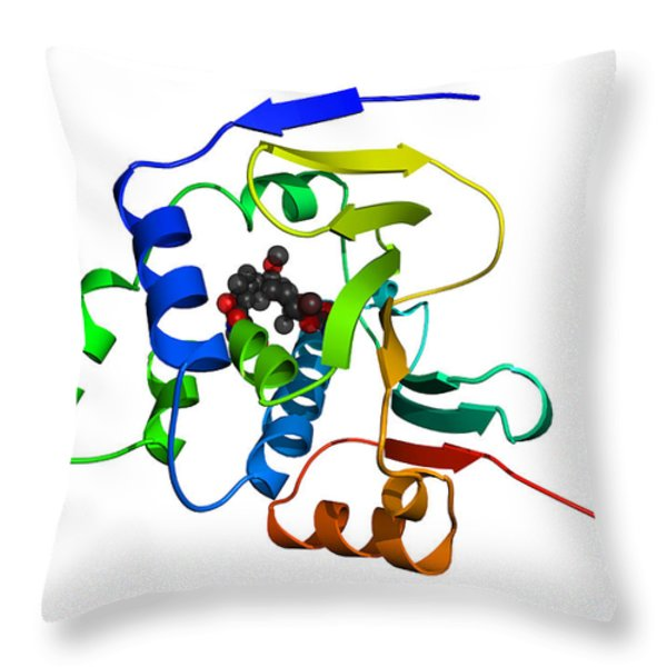 Heat Shock Protein 90 Throw Pillow by Ted Kinsman