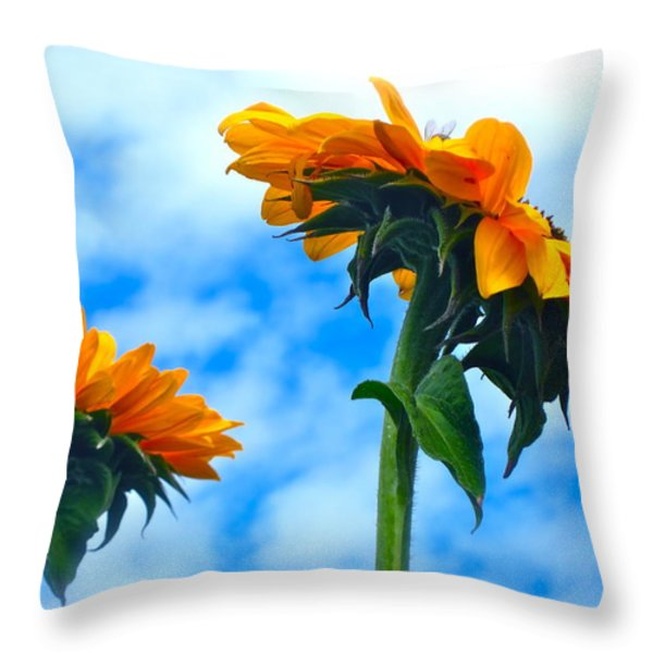 Heaven above ... Throw Pillow by Gwyn Newcombe
