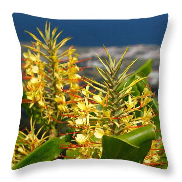 Hedychium Gardnerianum Throw Pillow by Gaspar Avila