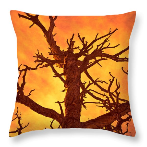 HELL Throw Pillow by Charles Dobbs