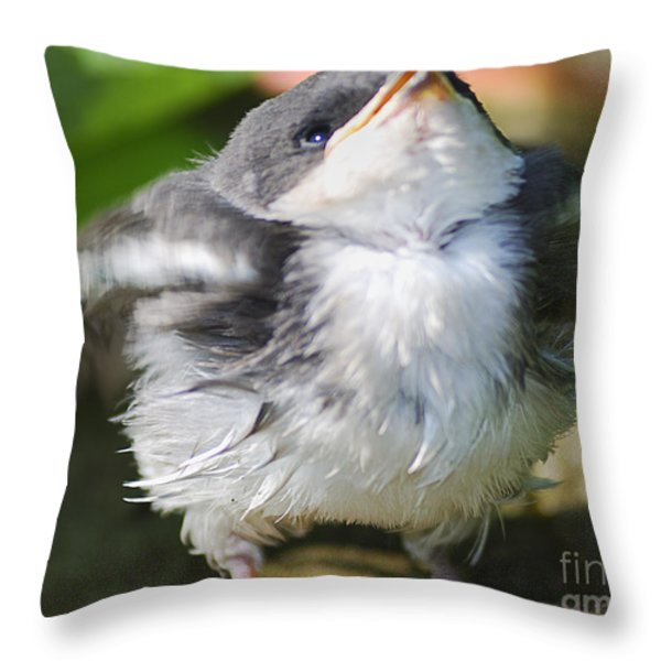 Here Comes Mommy Throw Pillow by Randy Bodkins