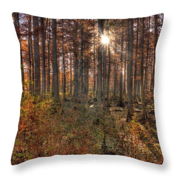 Heron Pond Cypress Trees Throw Pillow by Steve Gadomski