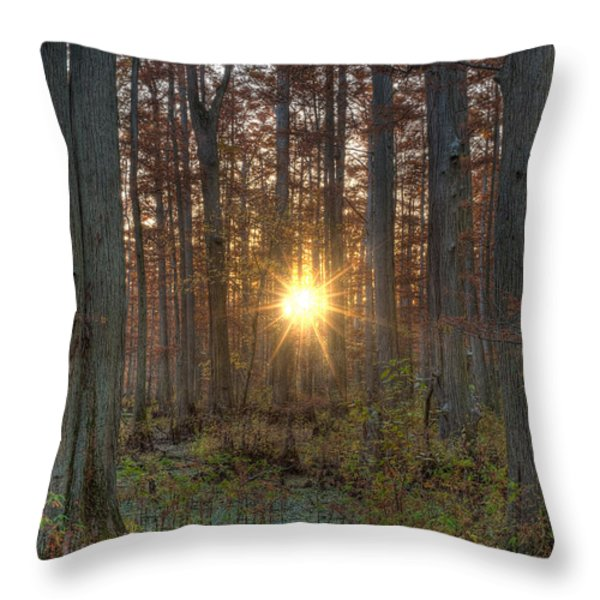 Heron Pond Sunrise Throw Pillow by Steve Gadomski