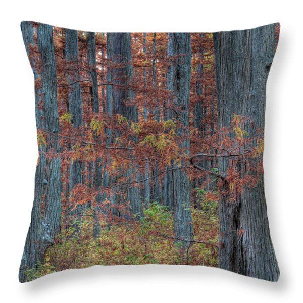 Heron Pond Twilight Throw Pillow by Steve Gadomski
