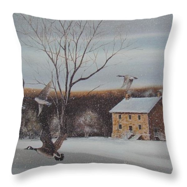 Hezakiah Alexander House Throw Pillow by Charles Roy Smith
