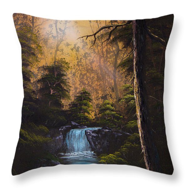 Hidden Brook Throw Pillow by C Steele