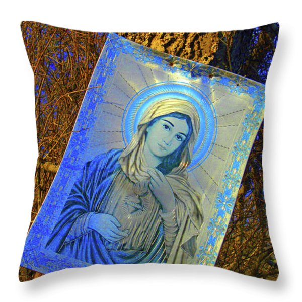 Hidden Shrine Throw Pillow by Joe Jake Pratt