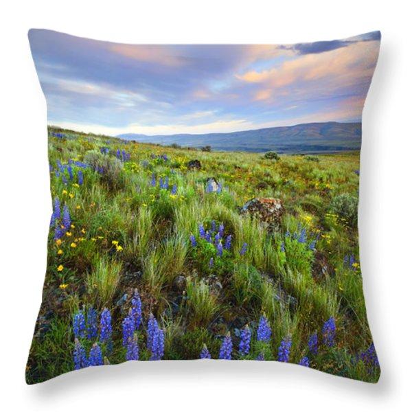 High Desert Spring Throw Pillow by Mike  Dawson
