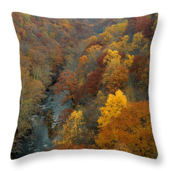 Highbridge highs Throw Pillow by Trish Hale
