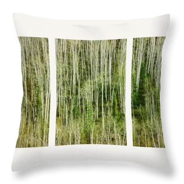 hillside forest Throw Pillow by Priska Wettstein