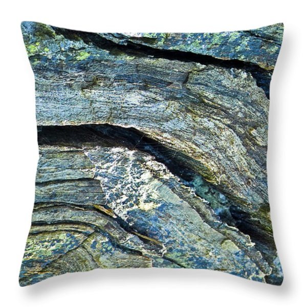 History of Earth 7 Throw Pillow by Heiko Koehrer-Wagner